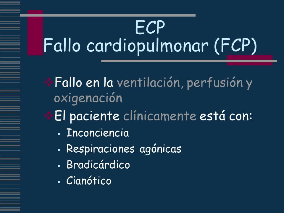 ECP Fallo cardiopulmonar (FCP) Fallo en la ventilación, perfusión y oxigenación El paciente clínicamente está con: Inconciencia Respiraciones agónicas