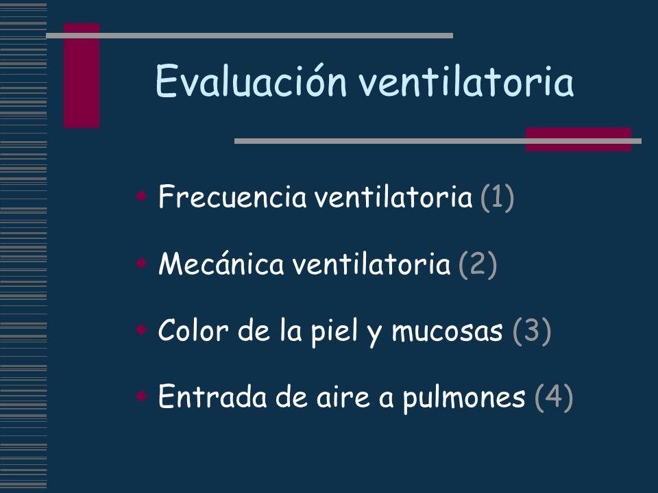 Evaluación ventilatoria Frecuencia ventilatoria (1) Mecánica ventilatoria (2) Color de la piel y mucosas (3) Entrada de aire a pulmones (4)