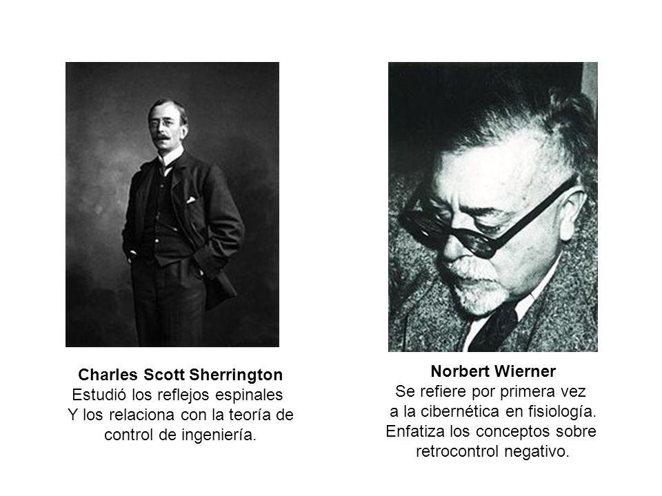Norbert Wierner Se refiere por primera vez a la cibernética en fisiología. Enfatiza los conceptos sobre retrocontrol negativo. Charles Scott Sherringt