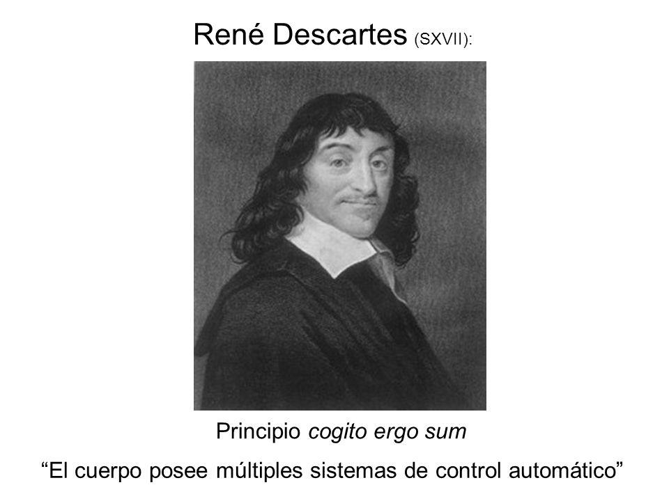 Principio cogito ergo sum René Descartes (SXVII): El cuerpo posee múltiples sistemas de control automático