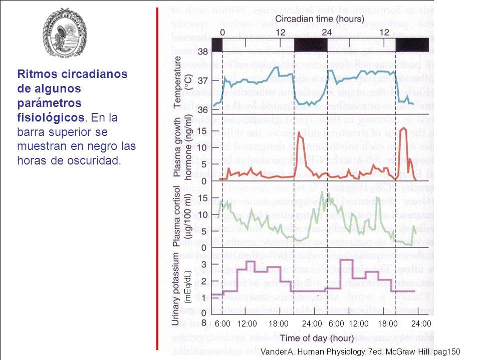 Ritmos circadianos de algunos parámetros fisiológicos. En la barra superior se muestran en negro las horas de oscuridad. 6:00 12:00 18:00 24:00 (mEq/d
