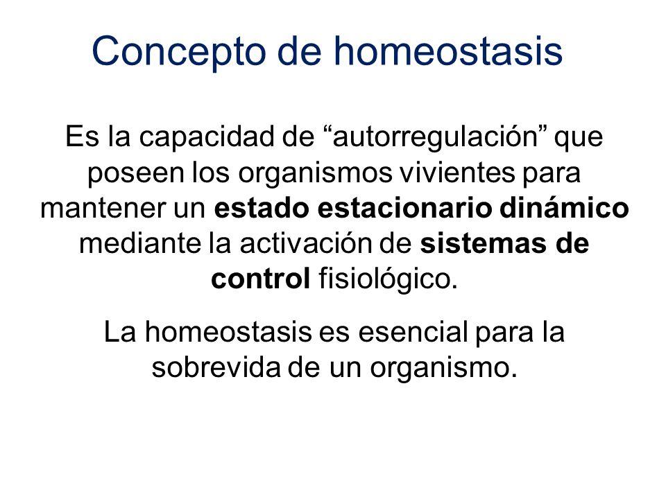 Es la capacidad de autorregulación que poseen los organismos vivientes para mantener un estado estacionario dinámico mediante la activación de sistema