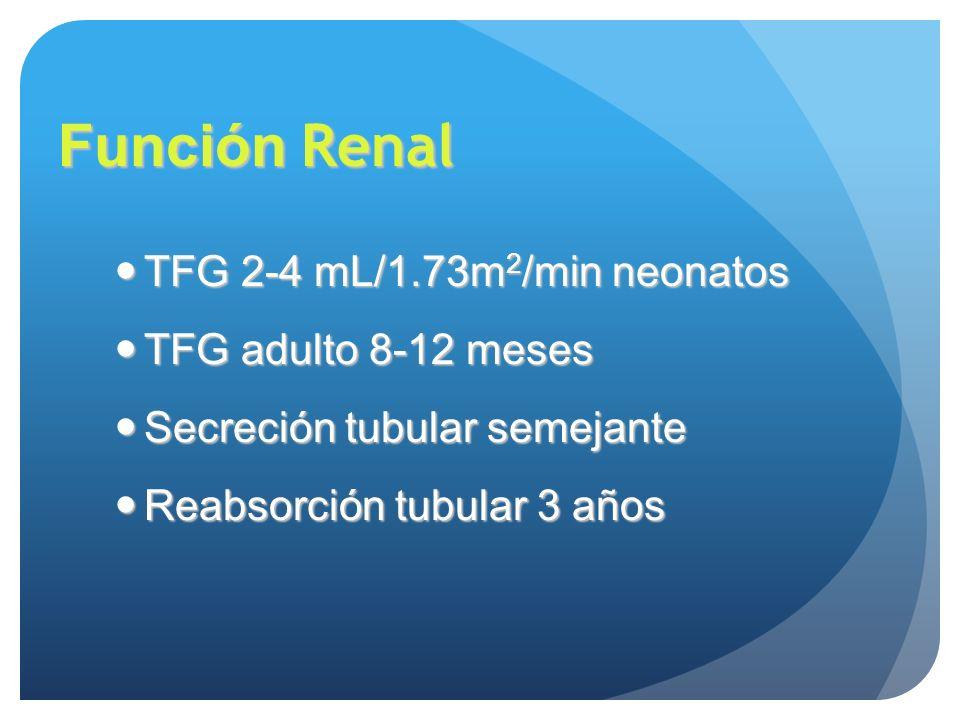 Función Renal TFG 2-4 mL/1.73m 2 /min neonatos TFG 2-4 mL/1.73m 2 /min neonatos TFG adulto 8-12 meses TFG adulto 8-12 meses Secreción tubular semejant