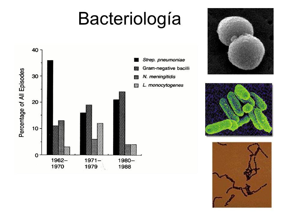 TAC y Meningitis Hasbun et al. N Engl J Med 2001;345(24):1727-1733