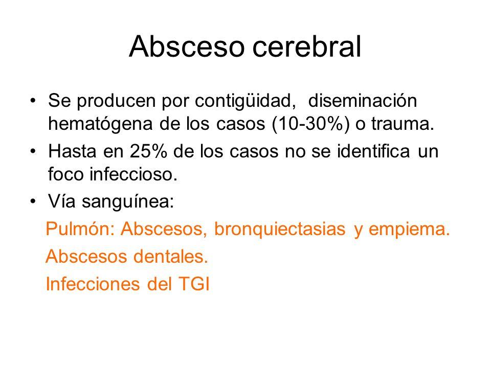 Absceso cerebral Se producen por contigüidad, diseminación hematógena de los casos (10-30%) o trauma. Hasta en 25% de los casos no se identifica un fo