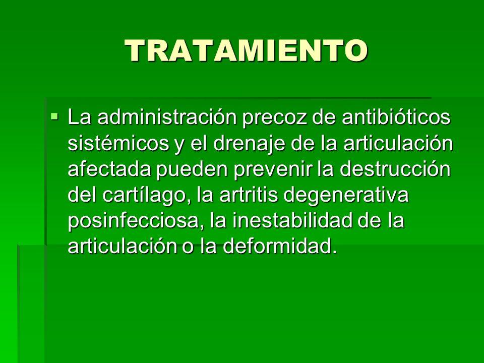 TRATAMIENTO La administración precoz de antibióticos sistémicos y el drenaje de la articulación afectada pueden prevenir la destrucción del cartílago,