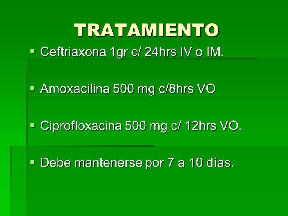 TRATAMIENTO Ceftriaxona 1gr c/ 24hrs IV o IM. Ceftriaxona 1gr c/ 24hrs IV o IM. Amoxacilina 500 mg c/8hrs VO Amoxacilina 500 mg c/8hrs VO Ciprofloxaci