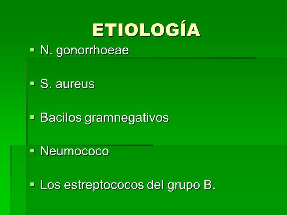 ETIOLOGÍA N. gonorrhoeae N. gonorrhoeae S. aureus S. aureus Bacilos gramnegativos Bacilos gramnegativos Neumococo Neumococo Los estreptococos del grup