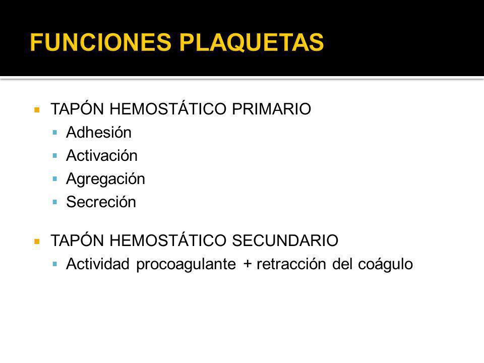 TAPÓN HEMOSTÁTICO PRIMARIO Adhesión Activación Agregación Secreción TAPÓN HEMOSTÁTICO SECUNDARIO Actividad procoagulante + retracción del coágulo