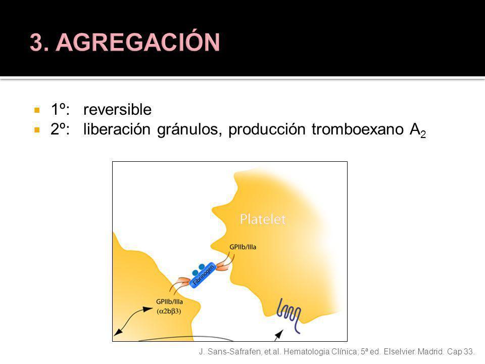 J. Sans-Safrafen, et.al. Hematologia Clínica; 5ª ed. Elselvier. Madrid. Cap 33. 1º: reversible 2º: liberación gránulos, producción tromboexano A 2