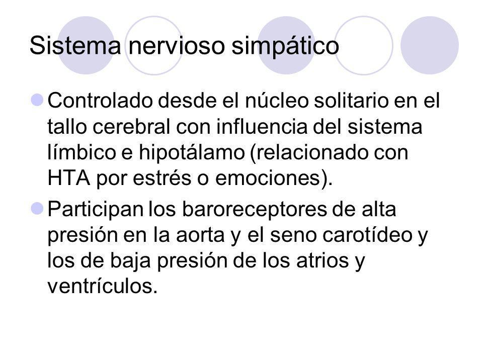 Sistema nervioso simpático Controlado desde el núcleo solitario en el tallo cerebral con influencia del sistema límbico e hipotálamo (relacionado con