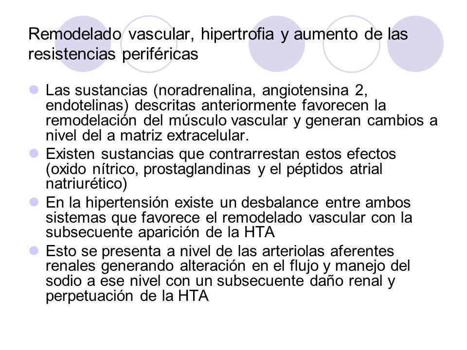 Remodelado vascular, hipertrofia y aumento de las resistencias periféricas Las sustancias (noradrenalina, angiotensina 2, endotelinas) descritas anter
