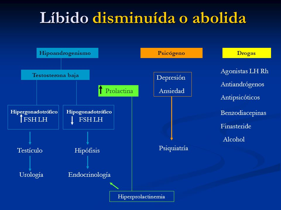 Líbido disminuída o abolida Líbido disminuída o abolida HipoandrogenismoPsicógeno Testosterona baja HipergonadotróficoHipogonadotrófico FSH LH Testícu