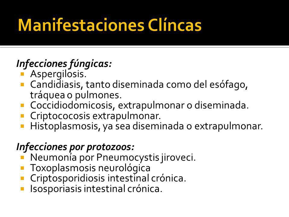 Infecciones fúngicas: Aspergilosis. Candidiasis, tanto diseminada como del esófago, tráquea o pulmones. Coccidiodomicosis, extrapulmonar o diseminada.