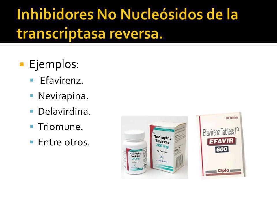 Ejemplos: Efavirenz. Nevirapina. Delavirdina. Triomune. Entre otros.