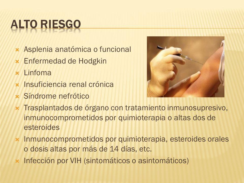 Asplenia anatómica o funcional Enfermedad de Hodgkin Linfoma Insuficiencia renal crónica Síndrome nefrótico Trasplantados de órgano con tratamiento in