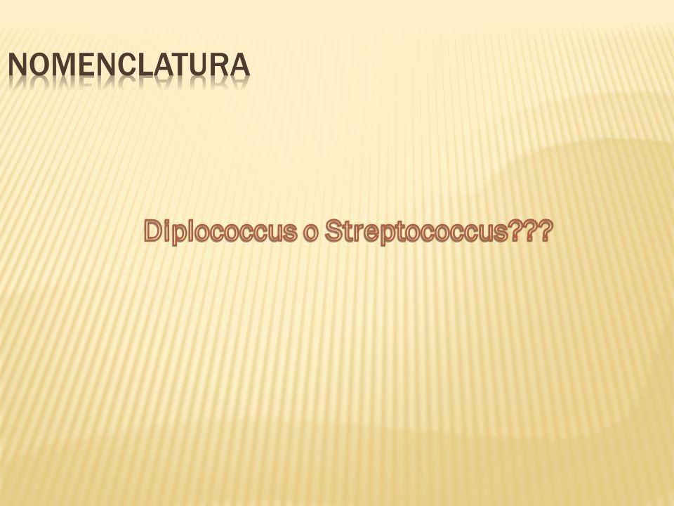 Reino: Eubacteria Filo: Firmicutes Clase: Bacilli Orden: Lactobacillales Familia: Streptococcaceae Género: Streptococcus Especie: S.