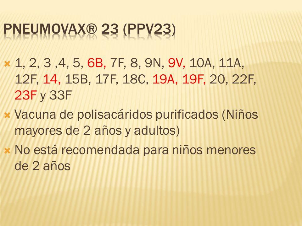 1, 2, 3,4, 5, 6B, 7F, 8, 9N, 9V, 10A, 11A, 12F, 14, 15B, 17F, 18C, 19A, 19F, 20, 22F, 23F y 33F Vacuna de polisacáridos purificados (Niños mayores de