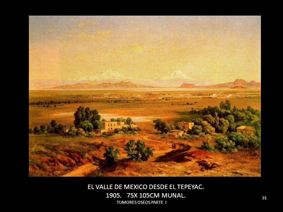 TUMORES OSEOS PARTE I 31 EL VALLE DE MEXICO DESDE EL TEPEYAC. 1905. 75X 105CM MUNAL.