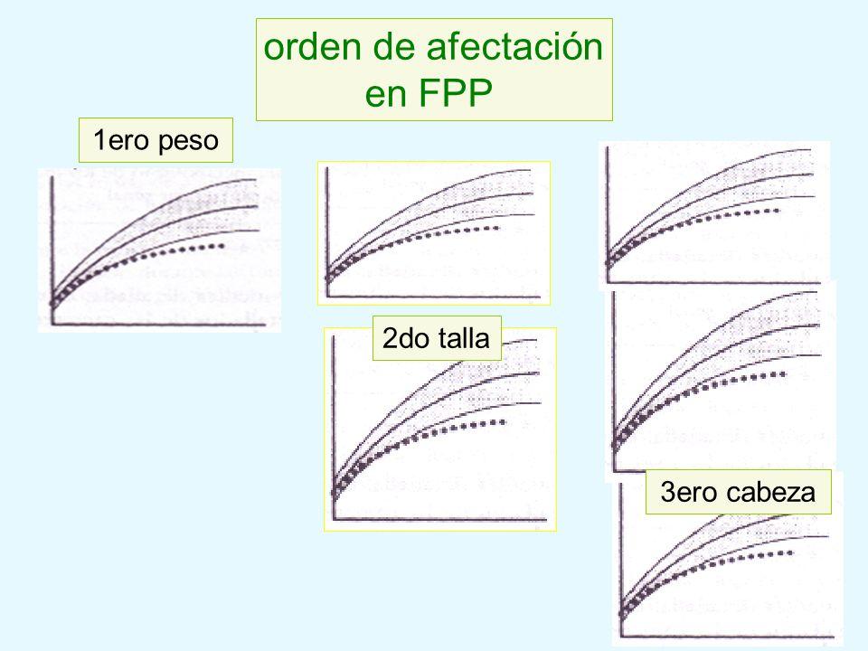 1ero peso 3ero cabeza 2do talla orden de afectación en FPP