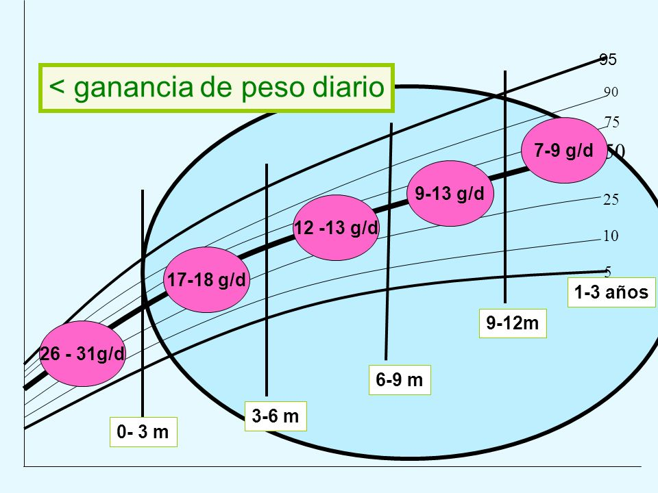 95 90 75 50 25 10 5 0- 3 m 3-6 m 6-9 m 26 - 31g/d 17-18 g/d 12 -13 g/d < ganancia de peso diario 9-13 g/d 9-12m 7-9 g/d 1-3 años