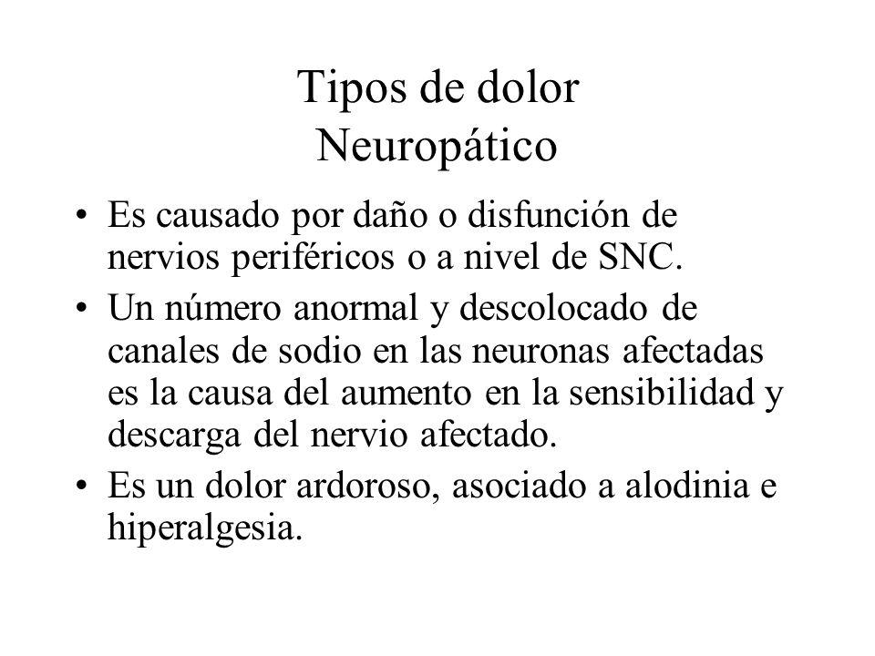 Tipos de dolor Neuropático Es causado por daño o disfunción de nervios periféricos o a nivel de SNC. Un número anormal y descolocado de canales de sod