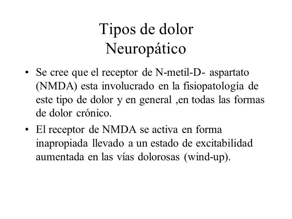 Tipos de dolor Neuropático Se cree que el receptor de N-metil-D- aspartato (NMDA) esta involucrado en la fisiopatología de este tipo de dolor y en gen
