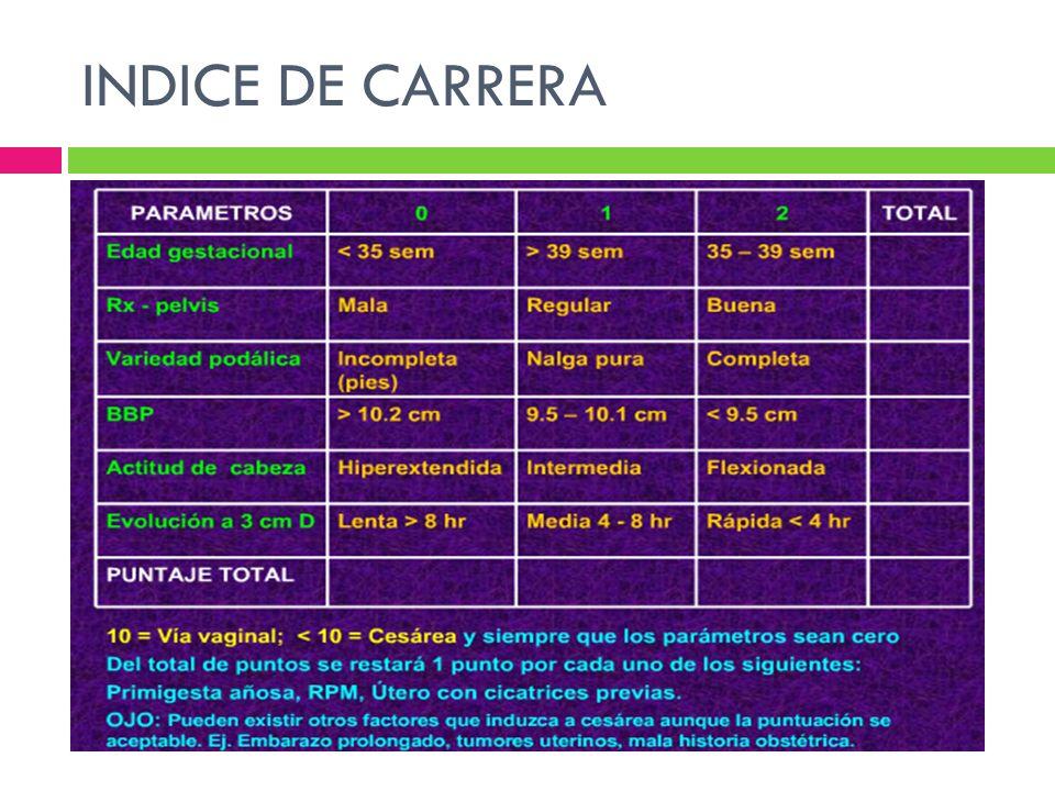 INDICE DE CARRERA