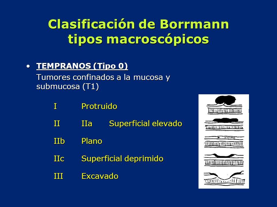 Clasificación de Borrmann tipos macroscópicos TEMPRANOS (Tipo 0)TEMPRANOS (Tipo 0) Tumores confinados a la mucosa y submucosa (T1) IProtruido IIIIa Su