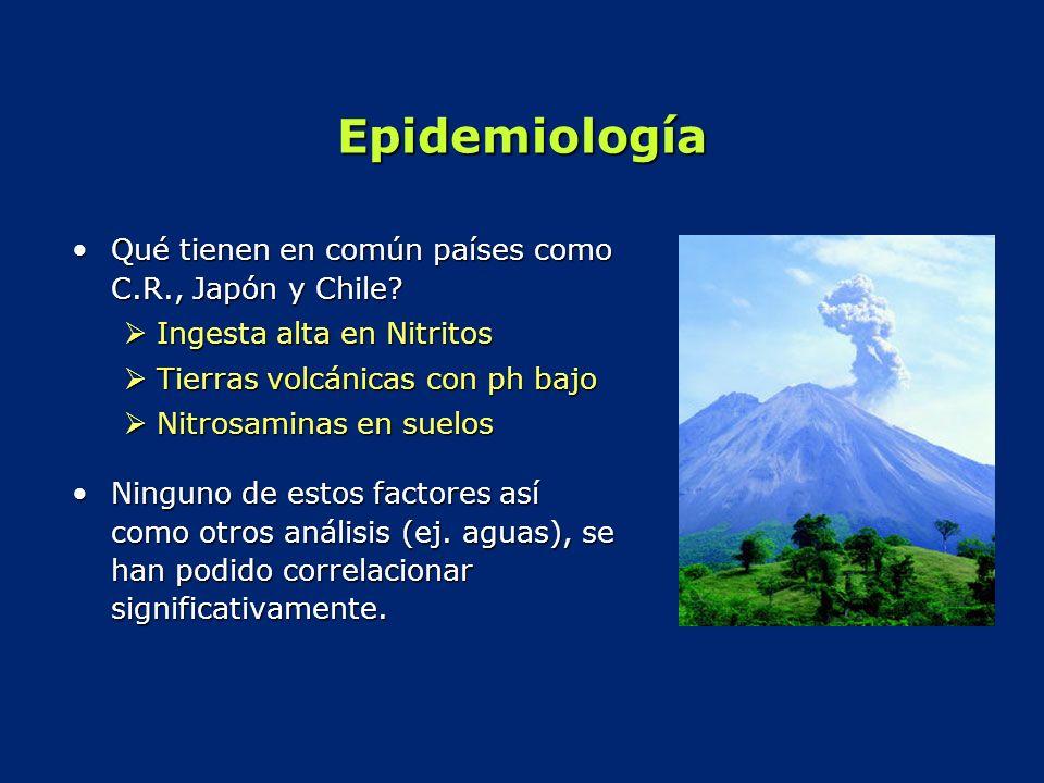 Epidemiología Qué tienen en común países como C.R., Japón y Chile?Qué tienen en común países como C.R., Japón y Chile? Ingesta alta en Nitritos Ingest