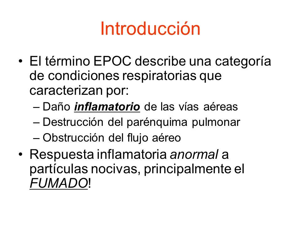 Introducción El término EPOC describe una categoría de condiciones respiratorias que caracterizan por: –Daño inflamatorio de las vías aéreas –Destrucc