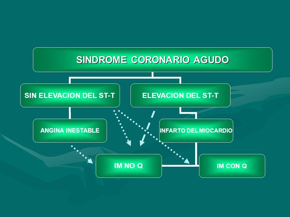 SINDROME CORONARIO AGUDO SIN ELEVACION DEL ST-TELEVACION DEL ST-T ANGINA INESTABLE INFARTO DEL MIOCARDIO IM NO Q IM CON Q