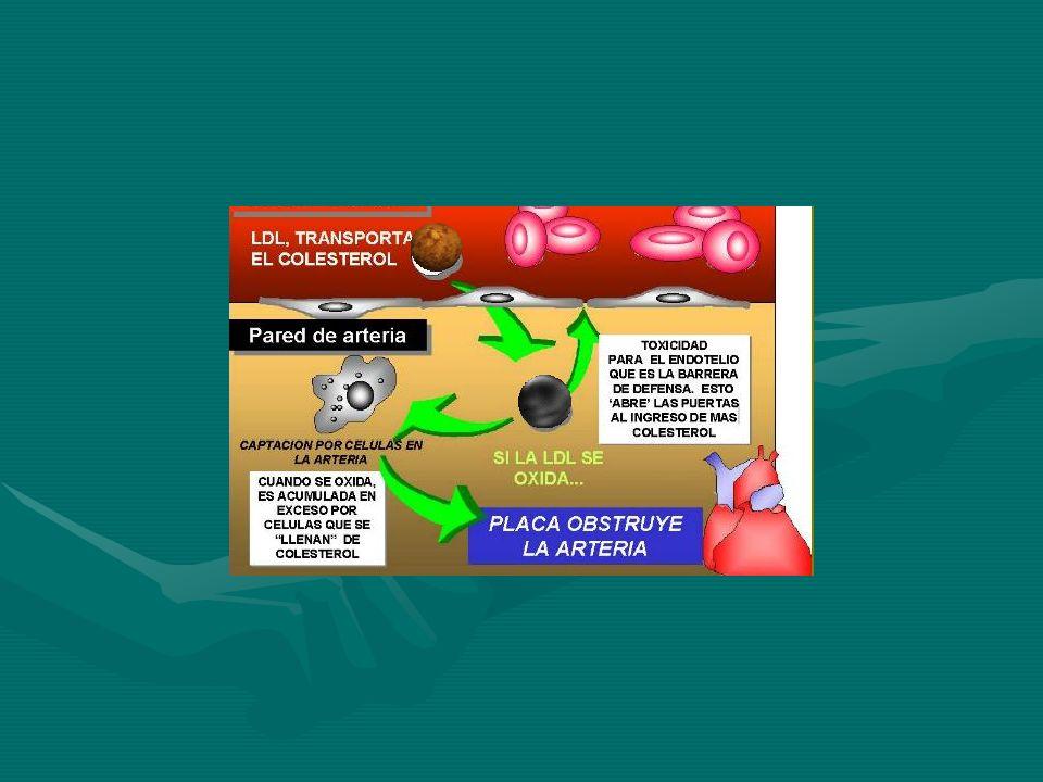 TRATAMIENTO Nitritos: son vasodilatadores coronarios y venosos.