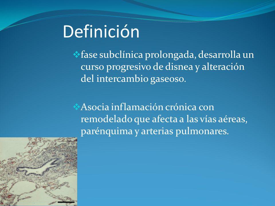 Definición fase subclínica prolongada, desarrolla un curso progresivo de disnea y alteración del intercambio gaseoso. Asocia inflamación crónica con r
