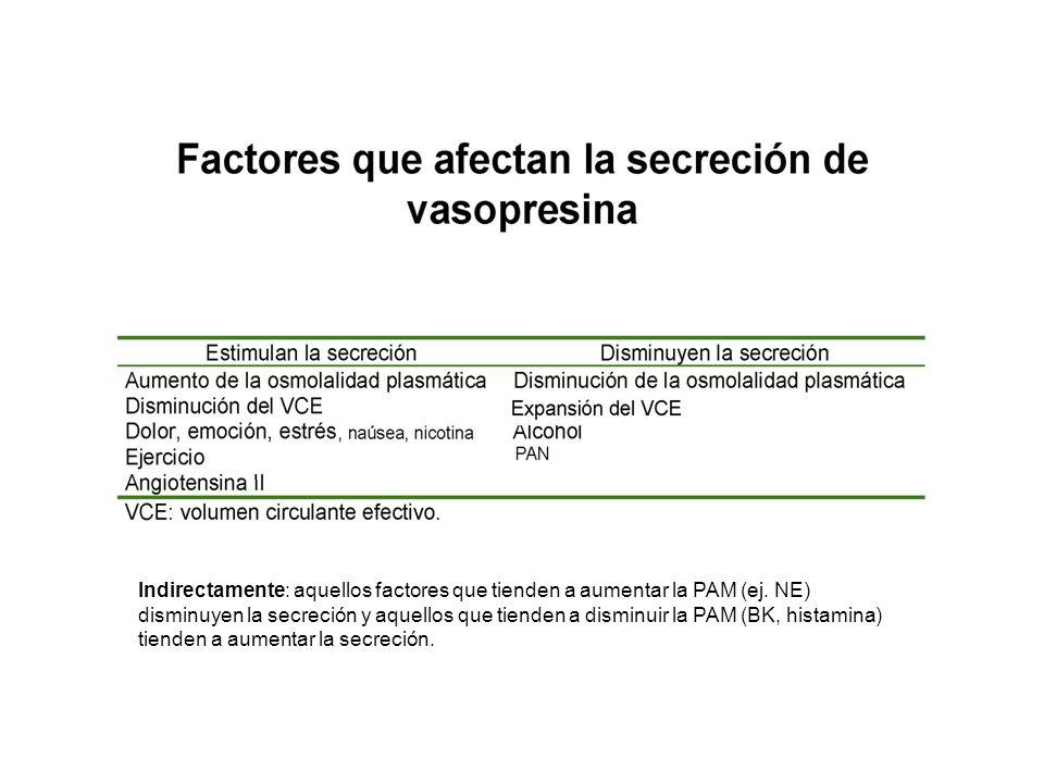 Indirectamente: aquellos factores que tienden a aumentar la PAM (ej. NE) disminuyen la secreción y aquellos que tienden a disminuir la PAM (BK, histam