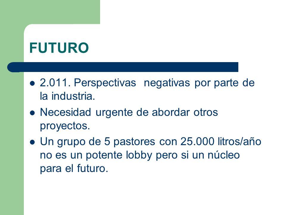 FUTURO 2.011. Perspectivas negativas por parte de la industria.
