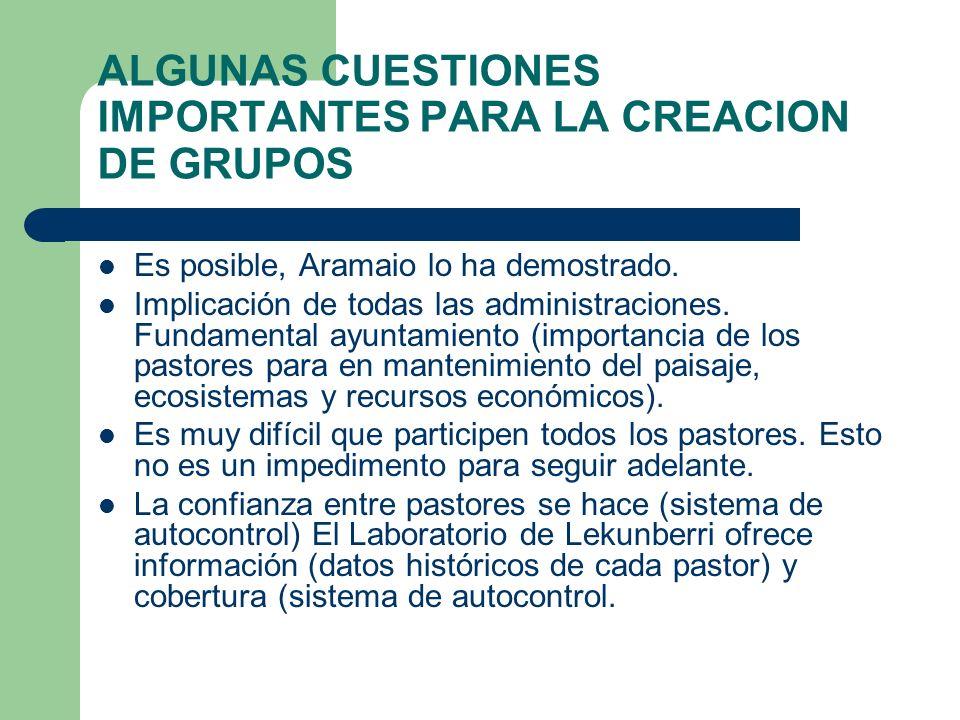 ALGUNAS CUESTIONES IMPORTANTES PARA LA CREACION DE GRUPOS Es posible, Aramaio lo ha demostrado.