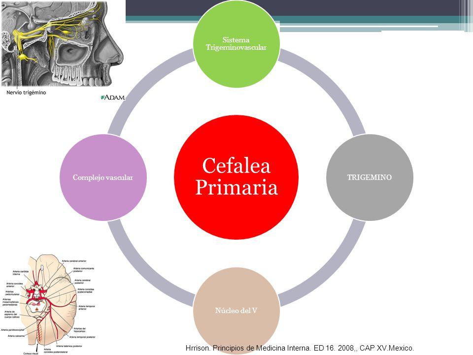 Cefalea Primaria Sistema Trigeminovascular TRIGEMINO Núcleo del V Complejo vascular Hrrison. Principios de Medicina Interna. ED 16. 2008,, CAP XV.Mexi
