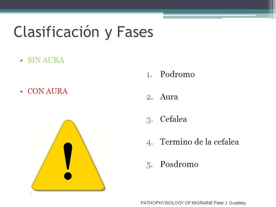 Clasificación y Fases SIN AURA CON AURA 1.Podromo 2.Aura 3.Cefalea 4.Termino de la cefalea 5.Posdromo PATHOPHYSIOLOGY OF MIGRAINE Peter J. Goadsby