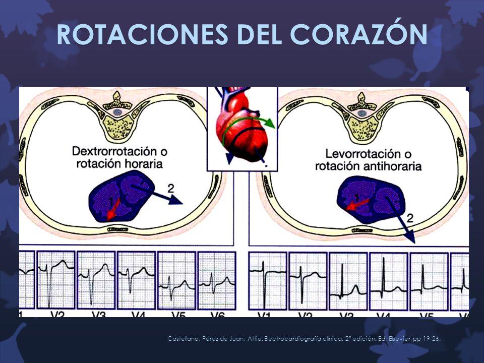 ROTACIONES DEL CORAZÓN Castellano, Pérez de Juan, Attie. Electrocardiografía clínica. 2ª edición. Ed. Elsevier, pp 19-26.
