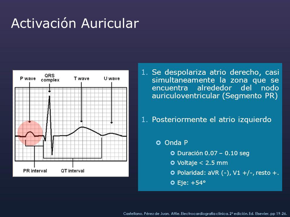 Activación Auricular 1.Se despolariza atrio derecho, casi simultaneamente la zona que se encuentra alrededor del nodo auriculoventricular (Segmento PR