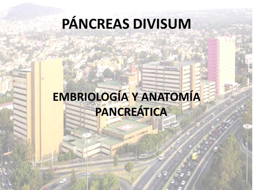 EMBRIOLOGÍA Y ANATOMÍA PANCREÁTICA PÁNCREAS DIVISUM