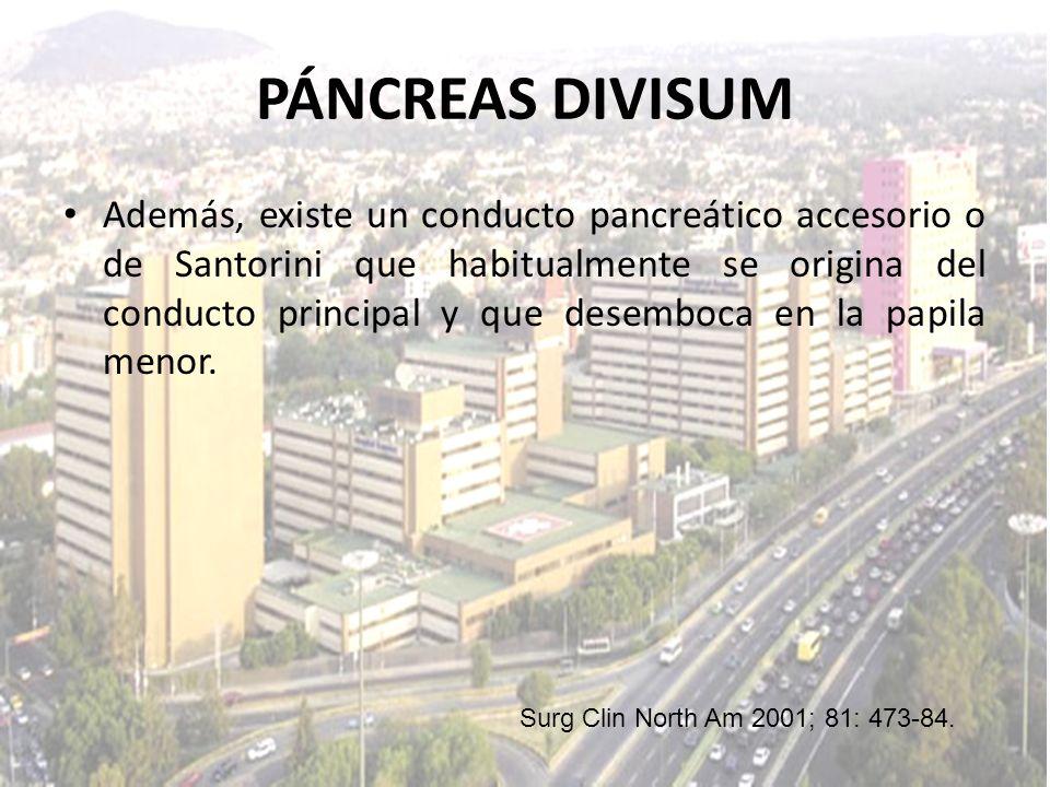 Además, existe un conducto pancreático accesorio o de Santorini que habitualmente se origina del conducto principal y que desemboca en la papila menor