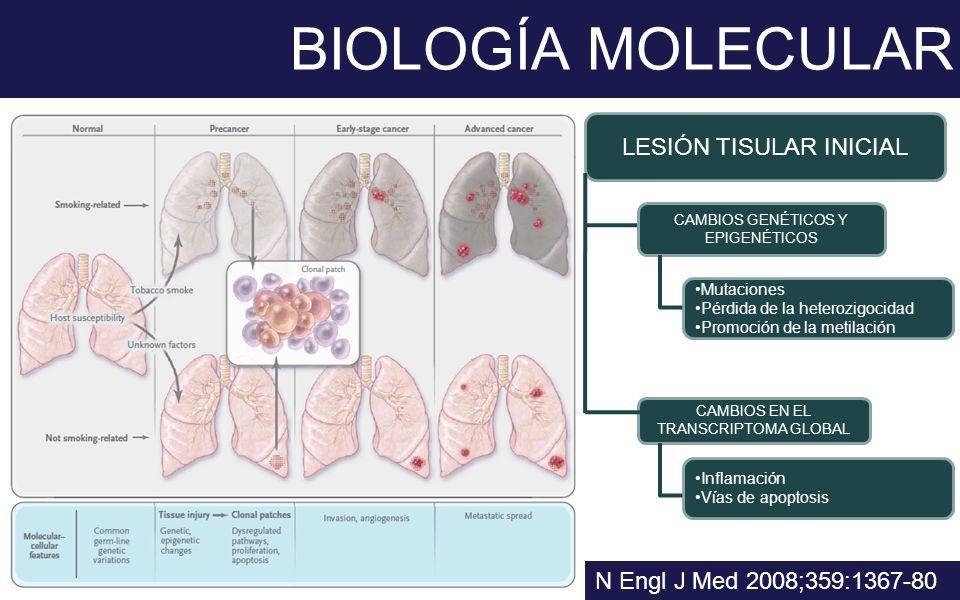 BIOLOGÍA MOLECULAR N Engl J Med 2008;359:1367-80 LESIÓN TISULAR INICIAL CAMBIOS GENÉTICOS Y EPIGENÉTICOS CAMBIOS EN EL TRANSCRIPTOMA GLOBAL Mutaciones
