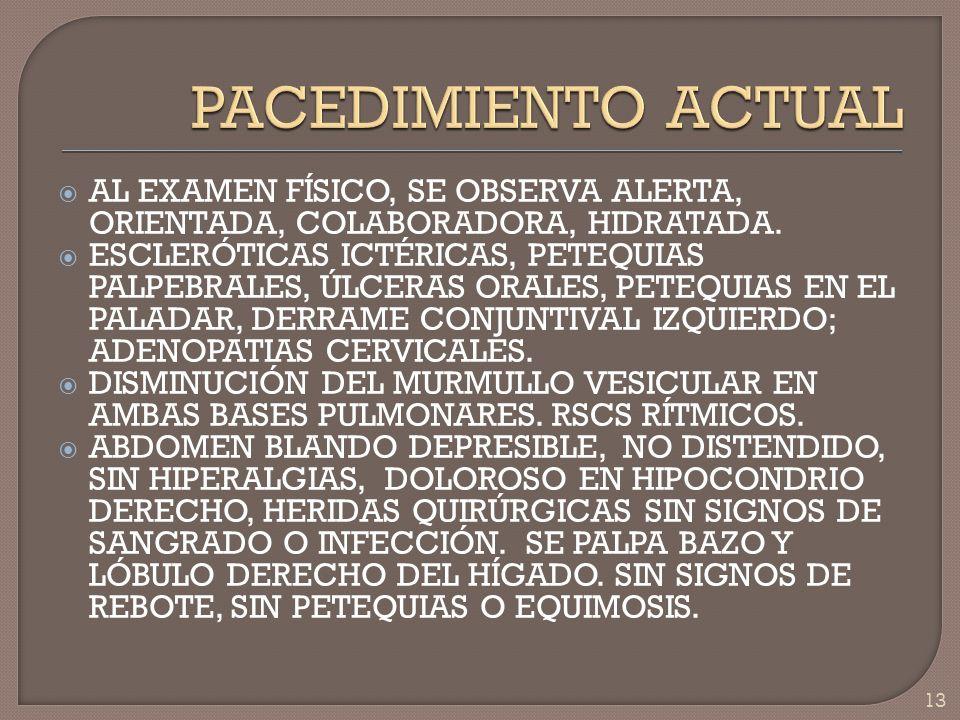 AL EXAMEN FÍSICO, SE OBSERVA ALERTA, ORIENTADA, COLABORADORA, HIDRATADA. ESCLERÓTICAS ICTÉRICAS, PETEQUIAS PALPEBRALES, ÚLCERAS ORALES, PETEQUIAS EN E