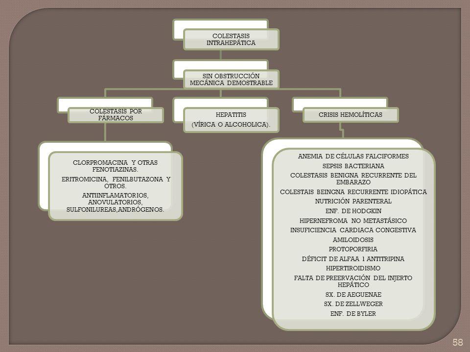58 COLESTASIS INTRAHEPÁTICA SIN OBSTRUCCIÓN MECÁNICA DEMOSTRABLE COLESTASIS POR FÁRMACOS CLORPROMACINA Y OTRAS FENOTIAZINAS. ERITROMICINA, FENILBUTAZO