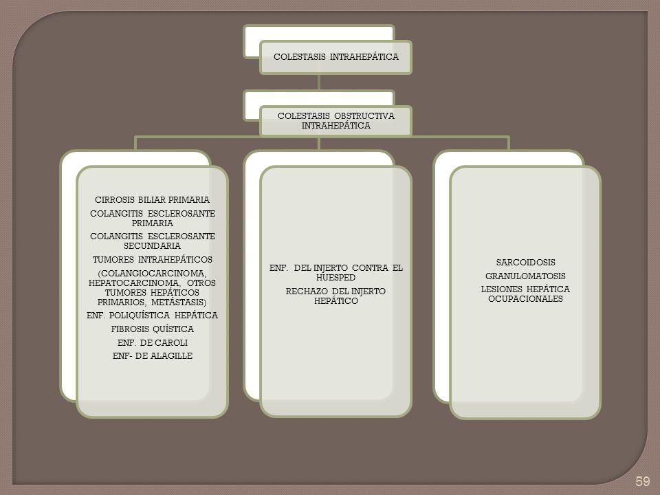 59 COLESTASIS INTRAHEPÁTICA COLESTASIS OBSTRUCTIVA INTRAHEPÁTICA CIRROSIS BILIAR PRIMARIA COLANGITIS ESCLEROSANTE PRIMARIA COLANGITIS ESCLEROSANTE SEC