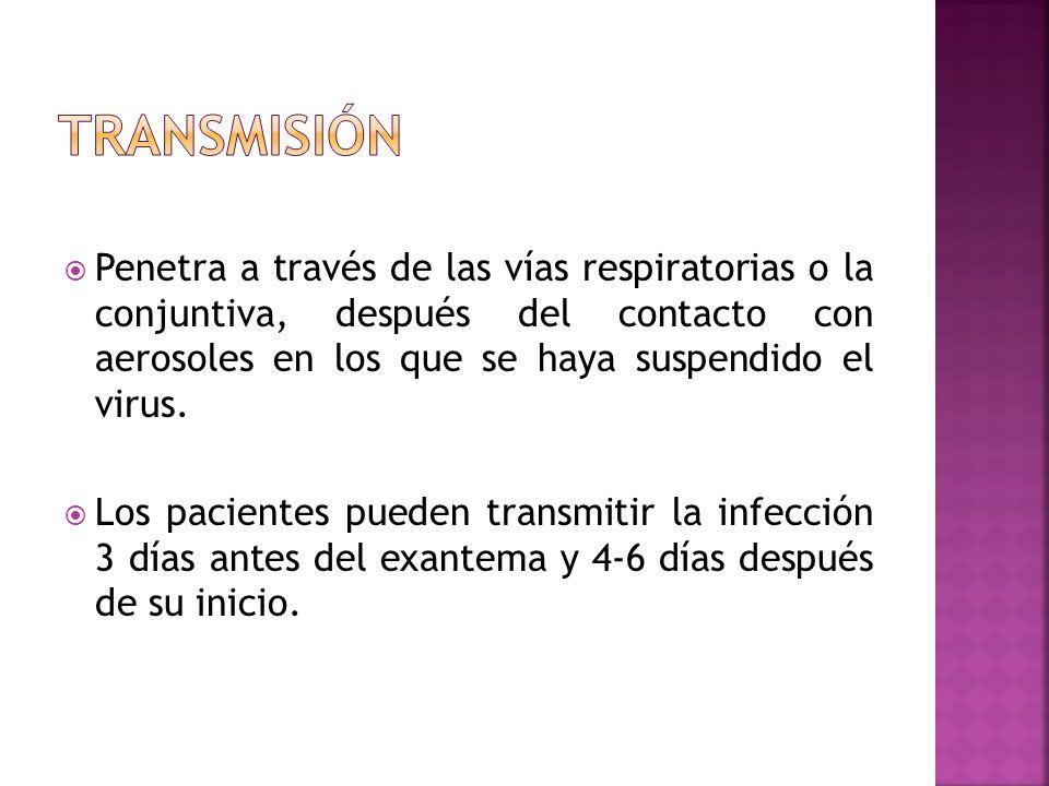 Penetra a través de las vías respiratorias o la conjuntiva, después del contacto con aerosoles en los que se haya suspendido el virus. Los pacientes p