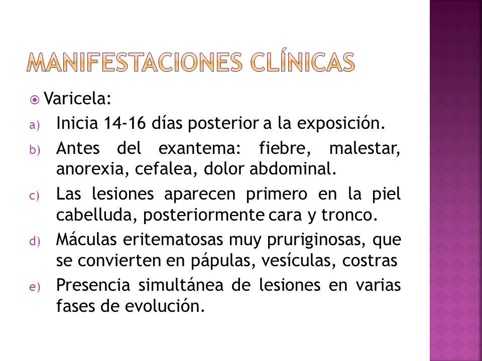 Varicela: a) Inicia 14-16 días posterior a la exposición. b) Antes del exantema: fiebre, malestar, anorexia, cefalea, dolor abdominal. c) Las lesiones