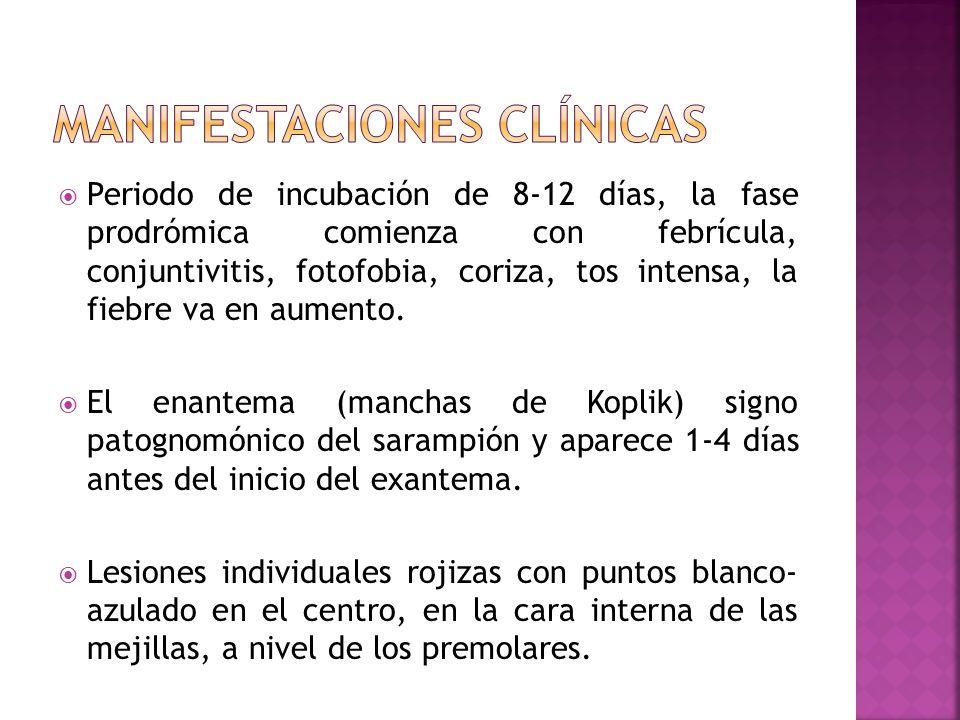 Periodo de incubación de 8-12 días, la fase prodrómica comienza con febrícula, conjuntivitis, fotofobia, coriza, tos intensa, la fiebre va en aumento.